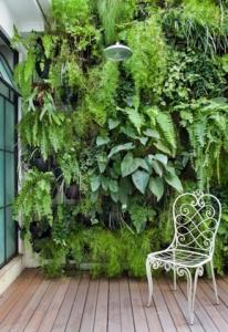 Mur végétal sur la terrasse - Nantes 44
